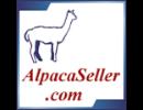 AlpacaSeller.com