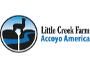 Little Creek Farm/Accoyo America